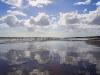 2399a-muriwai-beach